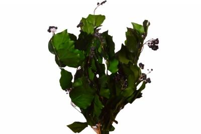 Hedera Fruits buchet Green