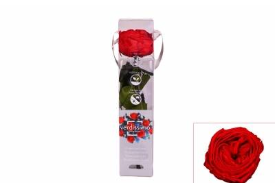 Rosa Garden Mini Gift Box Red